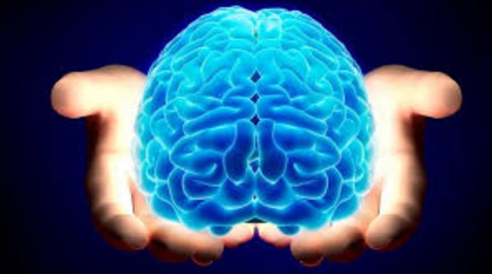 Zdravlje mozga – da li ga zanemarujete?